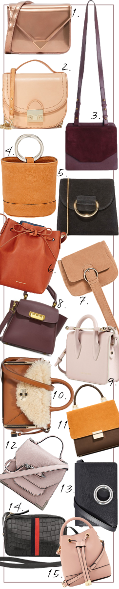 Spotlight On- Mini Bags4.png