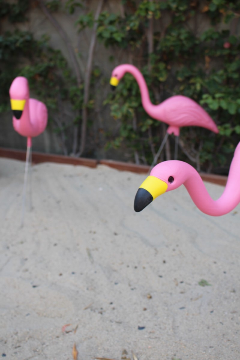 {Flamingo lawn ornaments}
