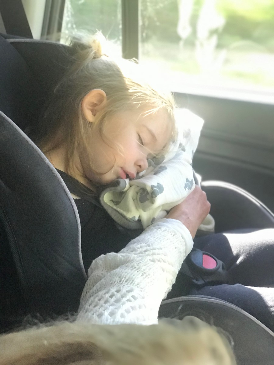 'Fifi' holding up Sloan's head while she napped in the car