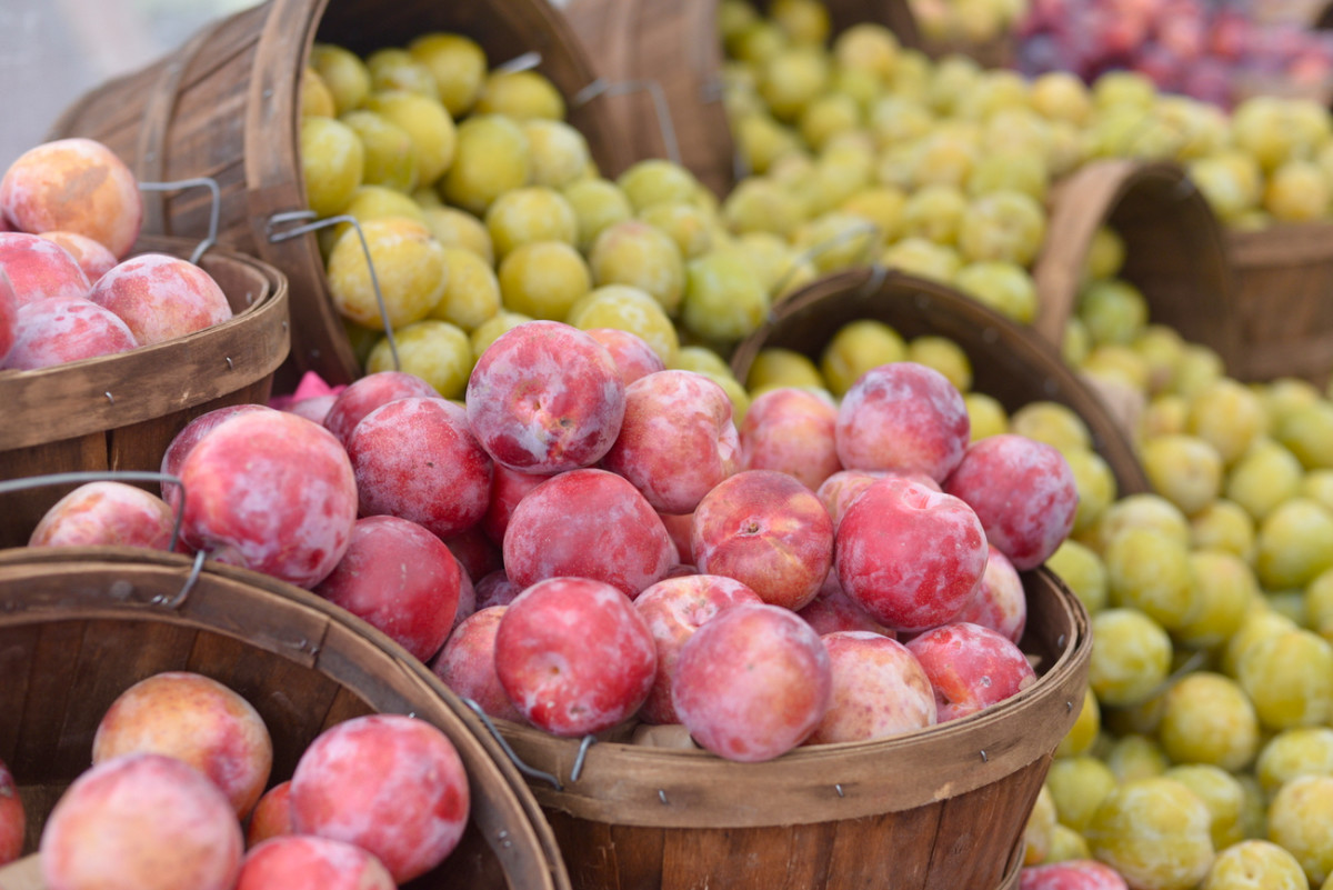 {Farmer's market plums}