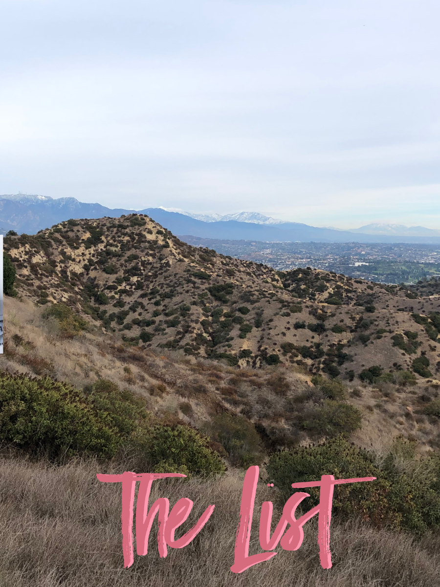A view of snow-topped mountains from yesterday's hike in Griffith Park!