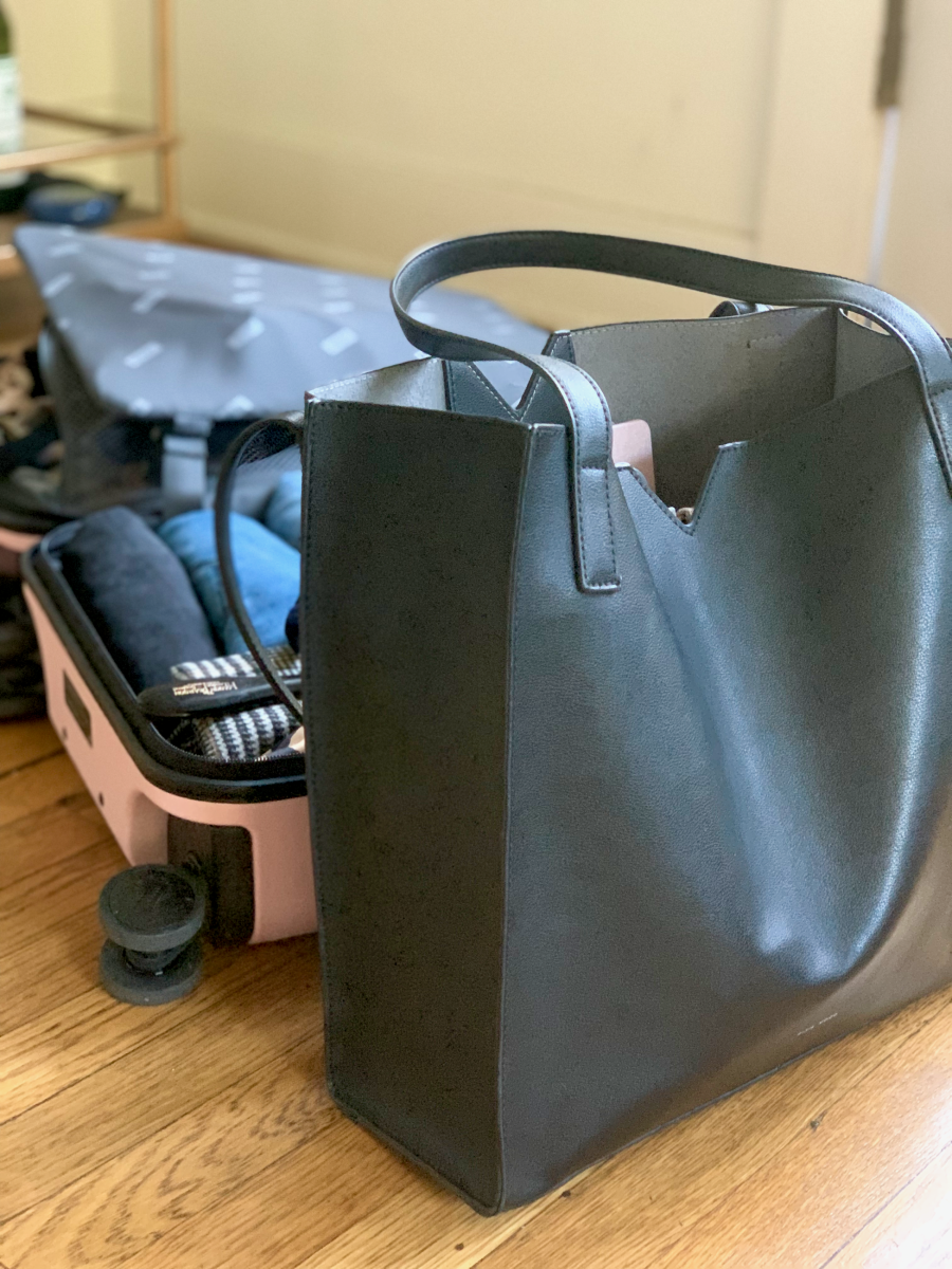 Pixie Mood Tote and Away Carry-On in 'Blush'